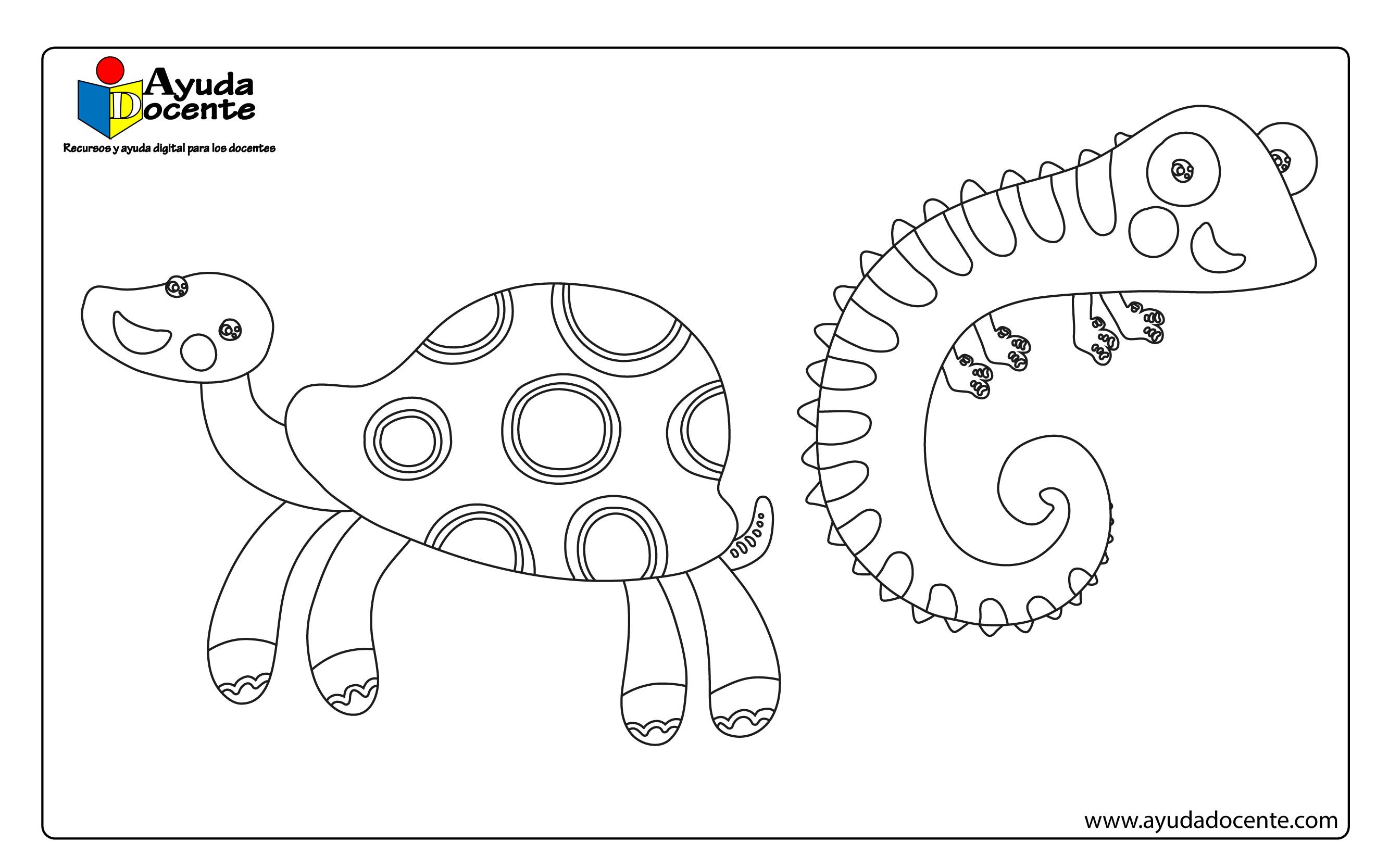 Dibujo animales 05