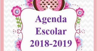 Agenda escolar 2018 Búho editable gratis